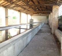 Waschhaus Bolsena